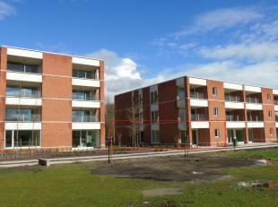 Appartement à vendre                     à 2390 Oostmalle