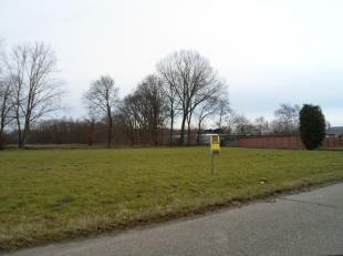 Terrain à vendre                     à 3130 Begijnendijk