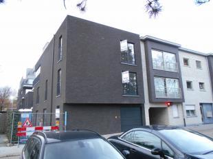 Instapklaar nieuwbouwappartement met o.a. 1 slaapkamer, terras, lift en ondergrondse garage en berging. Voor verdere info of afspraak bel 0473 33 33 3