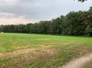 Landbouwgrond met een oppervlakte van 1 ha 07 a 10 ca<br /> <br /> Voor meer informatie, BEL 0473/11.55.66 of mail yves@wijns.be