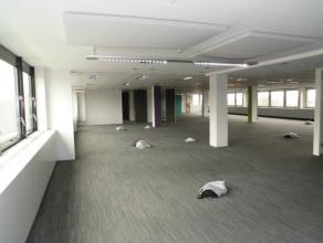 De kantoren zijn momenteel zeer nuttig ingedeeld in een grote open space met enkele aparte kantoren. Het kantoor kenmerkt zich door heel veel lichtinv