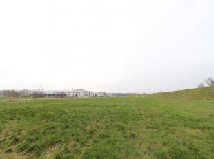 Zeer welgelegen industriegrond van 25.000 m² te koop aan het kanaal Gent-Terneuzen en nabij de R4 te Evergem. Het terrein is volledig ingericht r