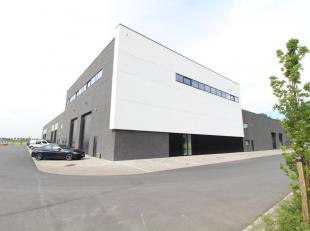 593 m² nieuwbouw kantoorruimte en 392 m² zonnig dakterras in combinatie met een opslagruimte van 248 m² te koop nabij de E40 te Landege