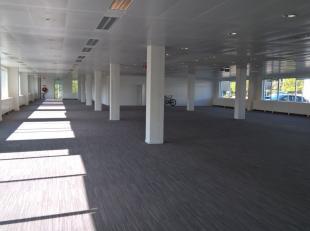 Espace polyvalent / bureau de 1.474 m² à louer le long le Brusselsesteenweg à Zellik. L'espace a trois portes sectionnelles et se t