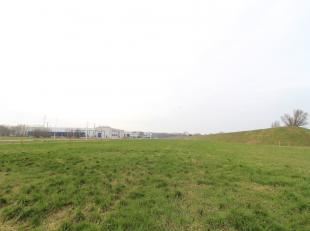 Terrain industriel de 3.112 m² à vendre à côté du port de Gand, au totale il y a 11 parcelles àpd 2.567 m²