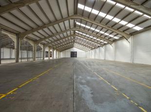 Magazijnruimte van 1.460 m² te huur, fantastisch gelegen vlakbij de N50 en de R8 te Kuurne. De toegang kan bekomen worden via ruime toegangspoort