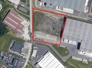 Nieuwe logistieke opslagruimtes te huur, state-of-the-art gebouw. Voorzien van alle faciliteiten voor een efficiënte distributie en opslag. 10,5