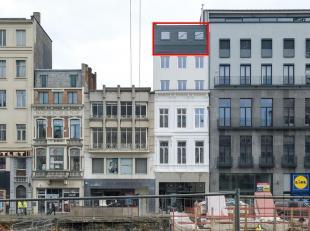 Volledig gerenoveerd appartement van ca. 50 m² met 1 slaapkamer en open leefkeuken,-ruimte op toplocatie in het centrum van Antwerpen.