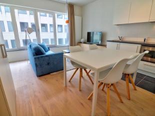 prachtig ingerichte studio (1e bezetting) van 30m ² bestaande uit- een woonkamer met keuken 19m² + slaaphoek- een doucheruimte met toilet- e