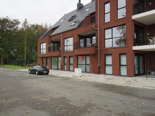 Zéér praktisch gelijkvloersappartement uitgevende op rustig dorpspleintje van Schoot-Tessenderlo. Inkomhal, volledig uitgeruste keuken v
