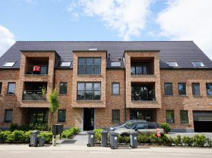 Prachtig duplexappartement op 1 minuut van oprit 23 Geel. Inkomhal, zonnige living aangesloten aan groot terras met uitzicht over de natuur, gerieflij