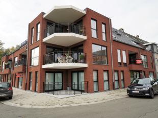 Prachtig appartement  met 2 slaapkamers, uitkijkende over de dorpskerk van Schoot-Tessenderlo. De geluidsarme lift brengt U in een oogopslag tot aan d