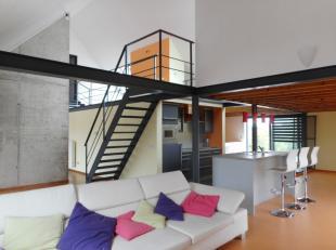 Instapklaar (nagelnieuw) dak duplex-appartement/penthouse, hoogwaardige afwerking, het eerste terras (32m²) achteraan gelegen, is zuidwest gerich