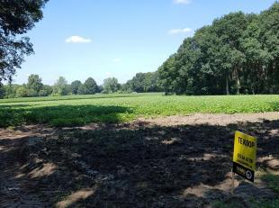 Perceel landbouwgrond van 1ha72a85ca gelegen te Ham.<br /> Bereikbaar via de Pauwbroekstraat.