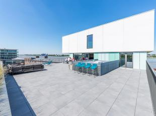 Gelegen aan het trendy Nieuw Zuid, vlakbij de Vlaamse en Waalse Kaai, loft appartement met drie slaapkamers dat een bewoonbare oppervlakte biedt van v
