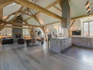 Loft in een authentieke boerderij, volledig gerenoveerd in 2015 en biedt een woonoppervlak van ± 250 m², evenals een tuin en een terras.<b