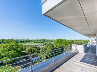 Op slechts een steenworp van «De Paardenrenbaan van Bosvoorde», penthouse appartement van ± 329 m² omringd door een terras van