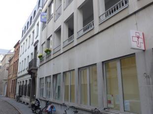 Semi gemeubelde studio ideaal gelegen in hartje Antwerpen. Rustige doodlopende straat aan de handelsbeurs parallel met de Meir en de Lange Nieuwstraat