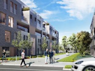 Dockside Gardens ligt aan de ontwikkeling Dok Noord, een nieuw stadsdeel dat in de komende jaren zal uitgroeien tot een echte Docklands in Gent, de ni