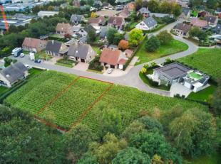 Deze bouwgrond te koop met oppervlakte van 524m² is gelegen in het centrum van Wingene. Het perceel grond is gelegen in een rustige, doodlopende