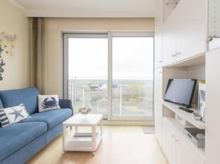 Instapklare studio met zicht op het Hinterland gelegen op de negende verdieping van de Residentie Zeegalm te Middelkerke, Zeedijk 257. Deze studio lig