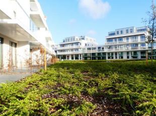 Het project 'Witte Molen Park' in Sint-Michiels omvat drie woonvolumes gesitueerd rond een binnengebied met wadi en fontein. Het project omvat ruime a