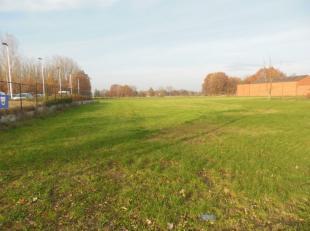 Mechelbaan Lot 8<br /> Bouwgrond OB, oppervlakte 850 m². Perceeloppervlakte= 16,68 meter breed - 48,69 meter diep. Bouwoppervlakte = 10,90 meter