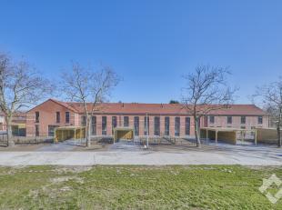 MOFFELSTRAAT 2 - PELT <br /> Charmant, gerenoveerde woning ( 147 m² ) met 3 slaapkamers, een carport en een tuintje op een perceel van 336 m&sup2