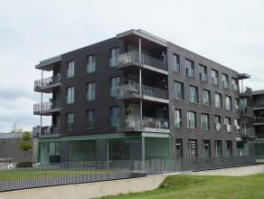 Een gelijkvloerse handels- of kantoorruimte met een oppervlakte van 80 m².   Het is gelegen op een zichtbare locatie aan de ringlaan rondom de st