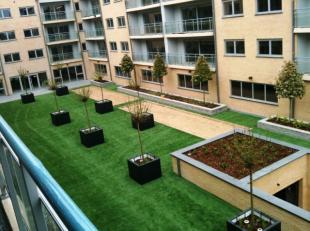 2de verdieping: recent verhuurd residentiëel appartement met Service Plus- formule - 1 ruime slaapkamer. Living met terras, dieptezicht op aangel