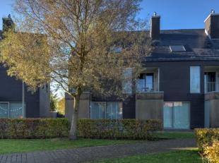 Maison à vendre                     à 2840 Terhagen