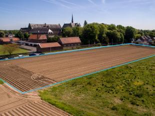 RAMEGNIES-CHIN - Terrain à bâtir (lot 8) d'une superficie de 10 a 11  ca; largeur: 29,46 m; limite droite en biais. 96.045 euro