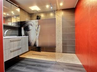 BAILLEUL- Jolie propriété avec partie professionnelle, possibilité 4 à 6 chambres, 2 salles de bains, 2 garages, jardin ar