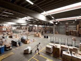 Gunstig gelegen magazijnruimte aan de Nijverheidsstraat te Wommelgem. Vlotte bereikbaarheid via het rondpunt van Wommelgem. De magazijnruimte beschikt