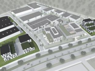 Het bedrijvenpark zal voorzien worden voor tal van grote en kleine bedrijven (KMO- en bedrijfsverzamelgebouwen). <br /> <br />  Daarnaast is er ook