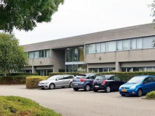 Zandvoortstraat 1, 2800 Mechelen | Kantoor (1 unit, 2410 m²) - Magazijn (1 unit, 1220 m²) - Terrein (1 unit, 380 m²) - Opbrengsteigendo