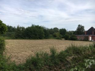 Goed gelegen KMO-grond te koop langs de Vaart in Wilsele (Leuven). De grond ligt op 5 min. rijafstand van oprit E314 en 10 min. rijafstand van het cen