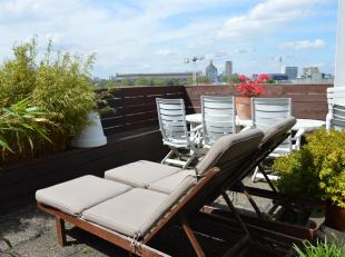 Op de grens van Antwerpen en Borgerhout nabij het Centraal Station vinden we dit gezellig dakappartement (ca.66m² + terras) op de 8ste verdieping