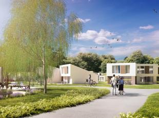 Vakantiedomein Exelshof zal bestaan uit 136 vakantiewoningen, vlakbij de dorpskern van Eksel. De woningen (2 en 3 slaapkamers) worden geclusterd per v