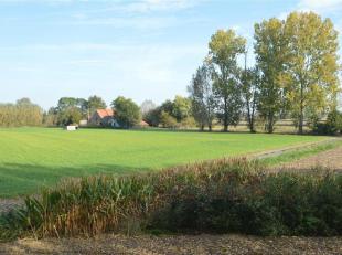 Rustig gelegen hoeve op 3.555 m2 op een prachtige locatie te Middelburg, vlakbij Damme en Moerkerke. Op 10 min van Knokke en Brugge. <br /> Een unieke