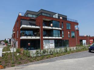 Commerciële HORECA handelsruimte in het centrum van Sint-Job-in-'t-Goor nabij de diverse uitvalswegen en een vlotte verbinding met het openbaar v