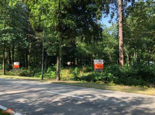 Deze unieke bouwgrond is gelegen in een bosrijk gebied voor verblijfsrecreatie waar permanent wonen en domiciliëring is toegestaan. Het perceel b