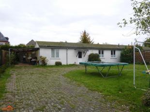 Maison à louer                     à 2040 Zandvliet