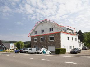 Aanbod volgens Troostwijksysteem met vaste afloopdatum 27-06 om 16u. <br /> In de Oostkantons (nabij Malmedy, Robertville, Spa-Franchorchamps, Sint-Vi