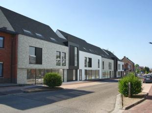 Appartement te koop                     in 3850 Nieuwerkerken