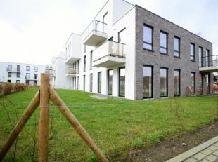 L'appartement se compose de: une entrée avec toillete, deux chambres à coucher, salon avec cuisine ouverte, salle de bain avec baignoire