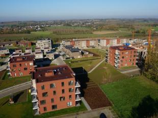 Rustig en groen wonen bij centrum Tongeren. Het is mogelijk in Heuveldal. Ontdek er appartementen met 1 of 2 kamers aan redelijke prijzen. Fijn om zel