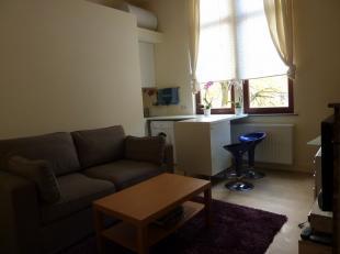 ''Rue des Arbalestriers 30/4. Appartement comprenant séjour avec coin cuisine semi-équipée, salle de douche, 1 chambre. Libre le