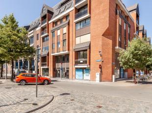 Deze ondergrondse parkeerplaatsen liggen pal in het historische centrum van de Leuvense binnenstad en genieten daardoor van een zeer goede bereikbaarh