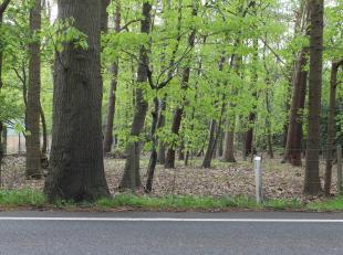 Deze bouwgrond is gelegen nabij het centrum van Putte Kapellen, in de omgeving van de Kalmthoutse Heide. De buurt wordt gekenmerkt door zijn groen kad